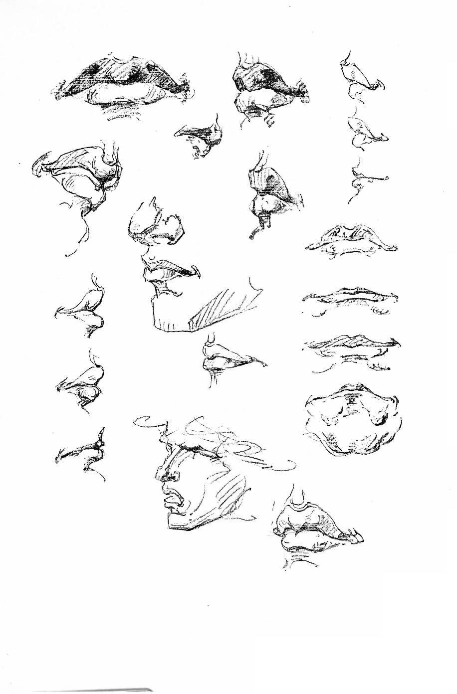 Constructive Anatomy by George Bridgman | AnatoRef - Art Anatomy ...