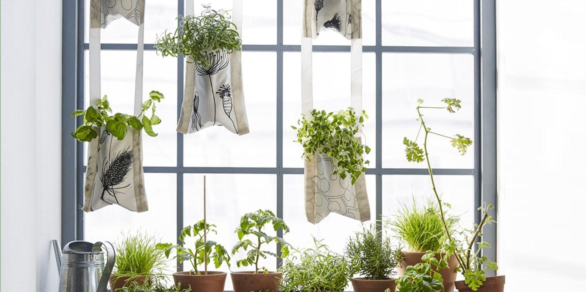 plantes suspendues un diy ikea pour faire une jardini re murale trucs sympas r aliser. Black Bedroom Furniture Sets. Home Design Ideas