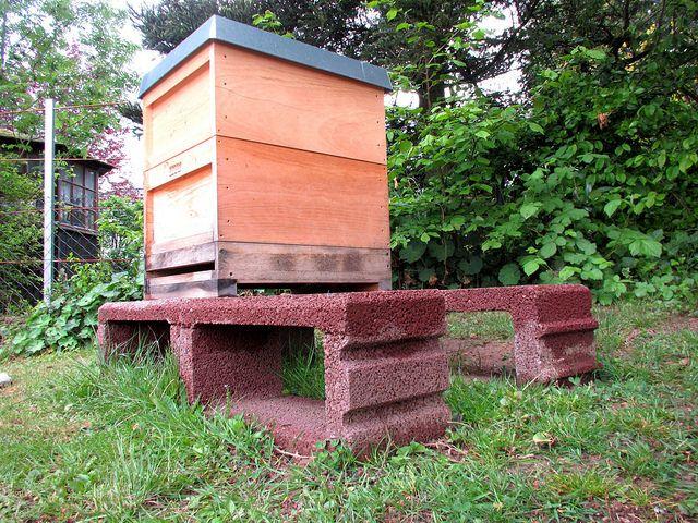 Beekeeping for Beginners Review - beekeeping #beekeeping # ...