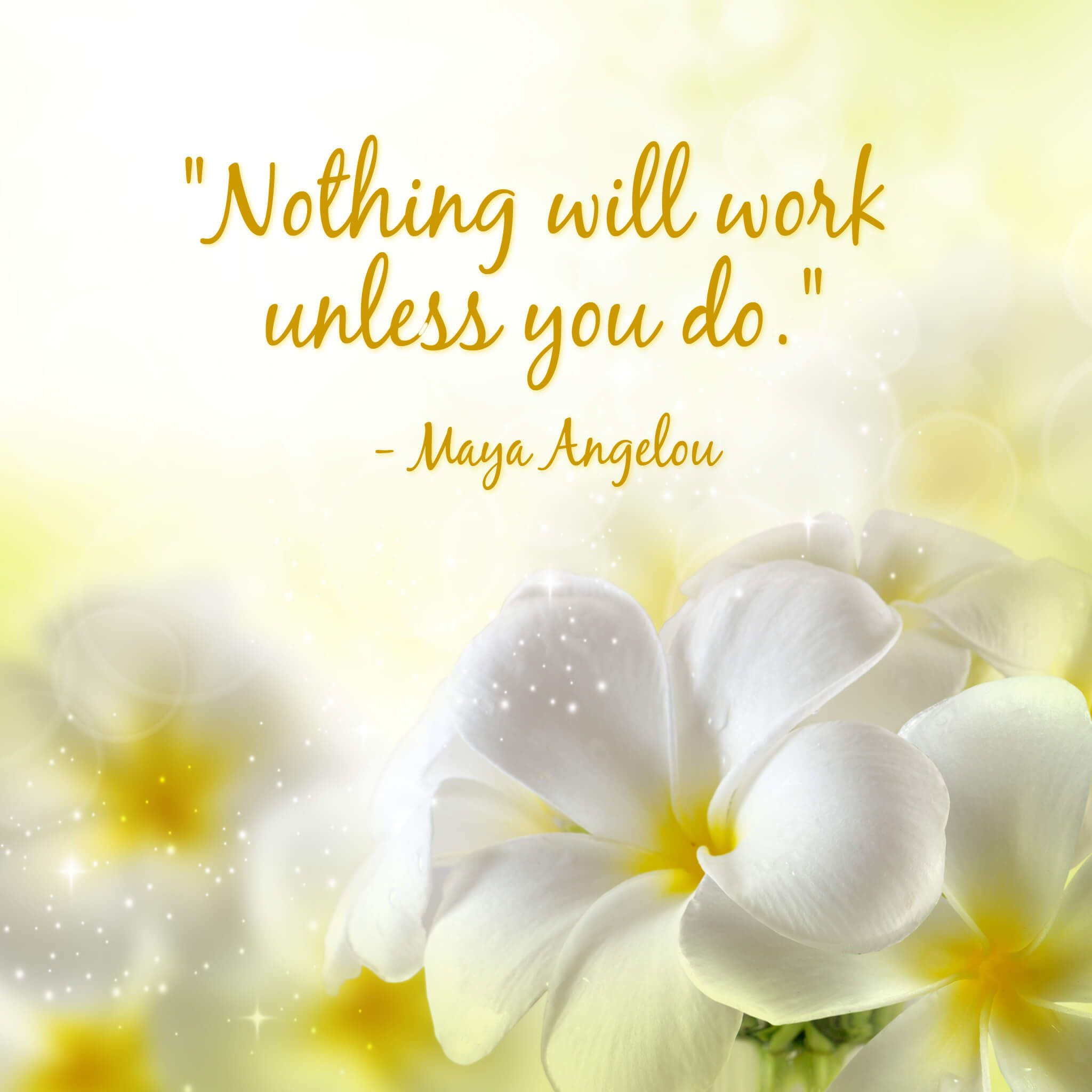 Nothing will work unless you do maya angelou quote maya angelou quote kristyandbryce Images