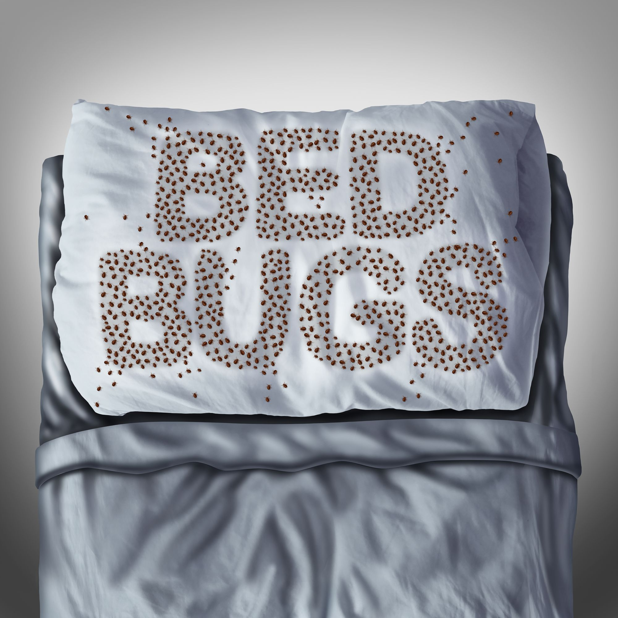 How do you get rid of bed bugs? Here are some tips