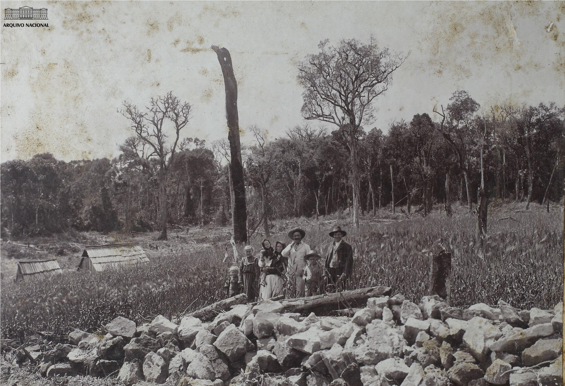 Plantação de cevada na colônia Vera Guarani, estado do Paraná, 1910.  Arquivo Nacional. Fundo Fotografias Avulsas. BR_RJANRIO_O2_0_FOT_00183_001