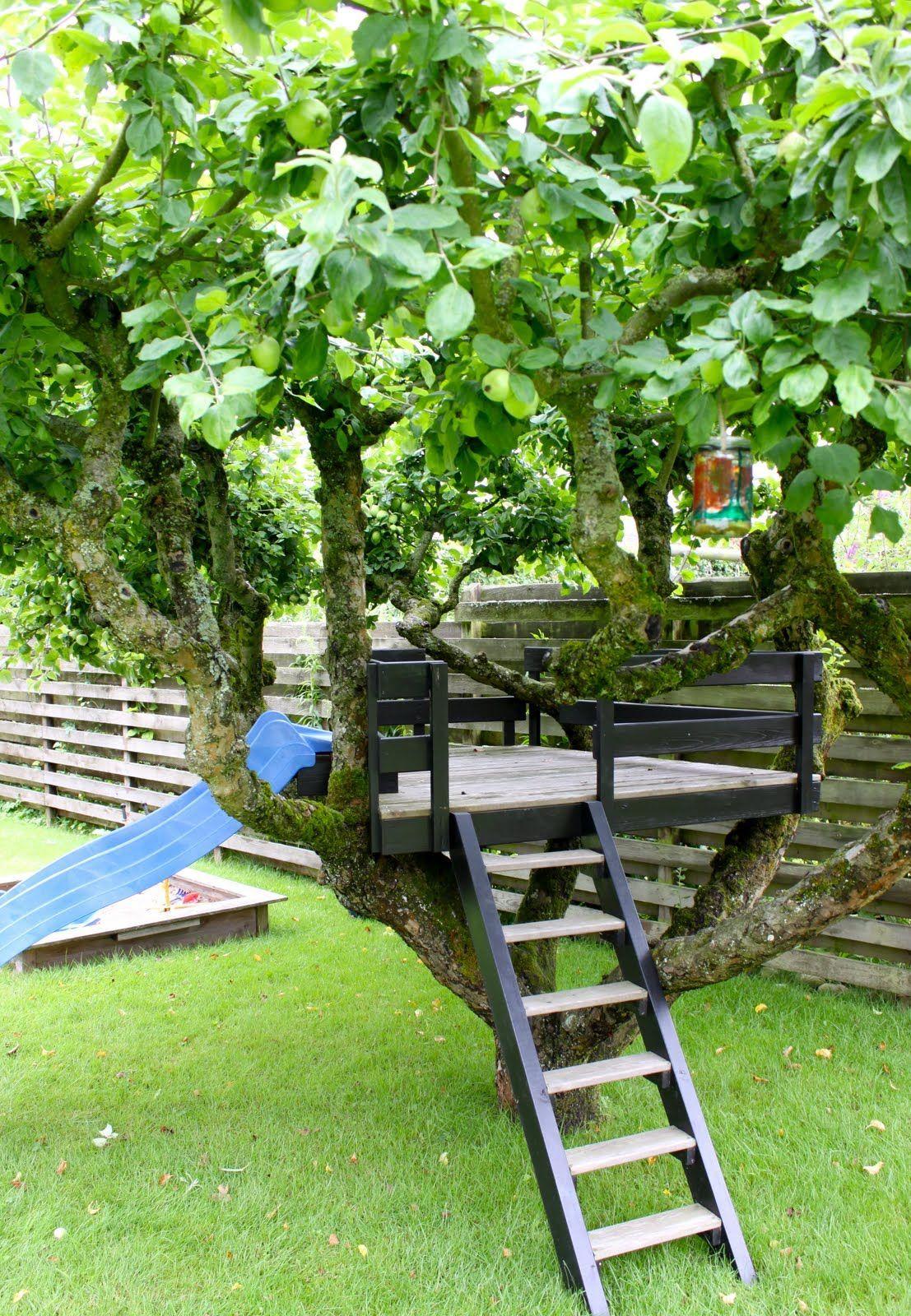 SMÅ STUNDER Hulen i træet #backyardremodel