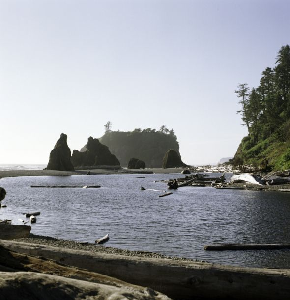 Miss this place. Gotta make it out to Olympic national park soon