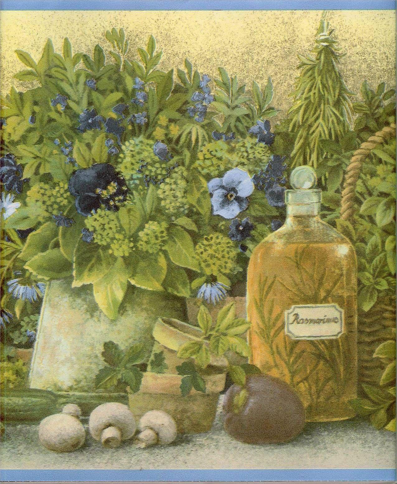 Country Kitchen Herbs w Blue Trim Wallpaper Border eBay