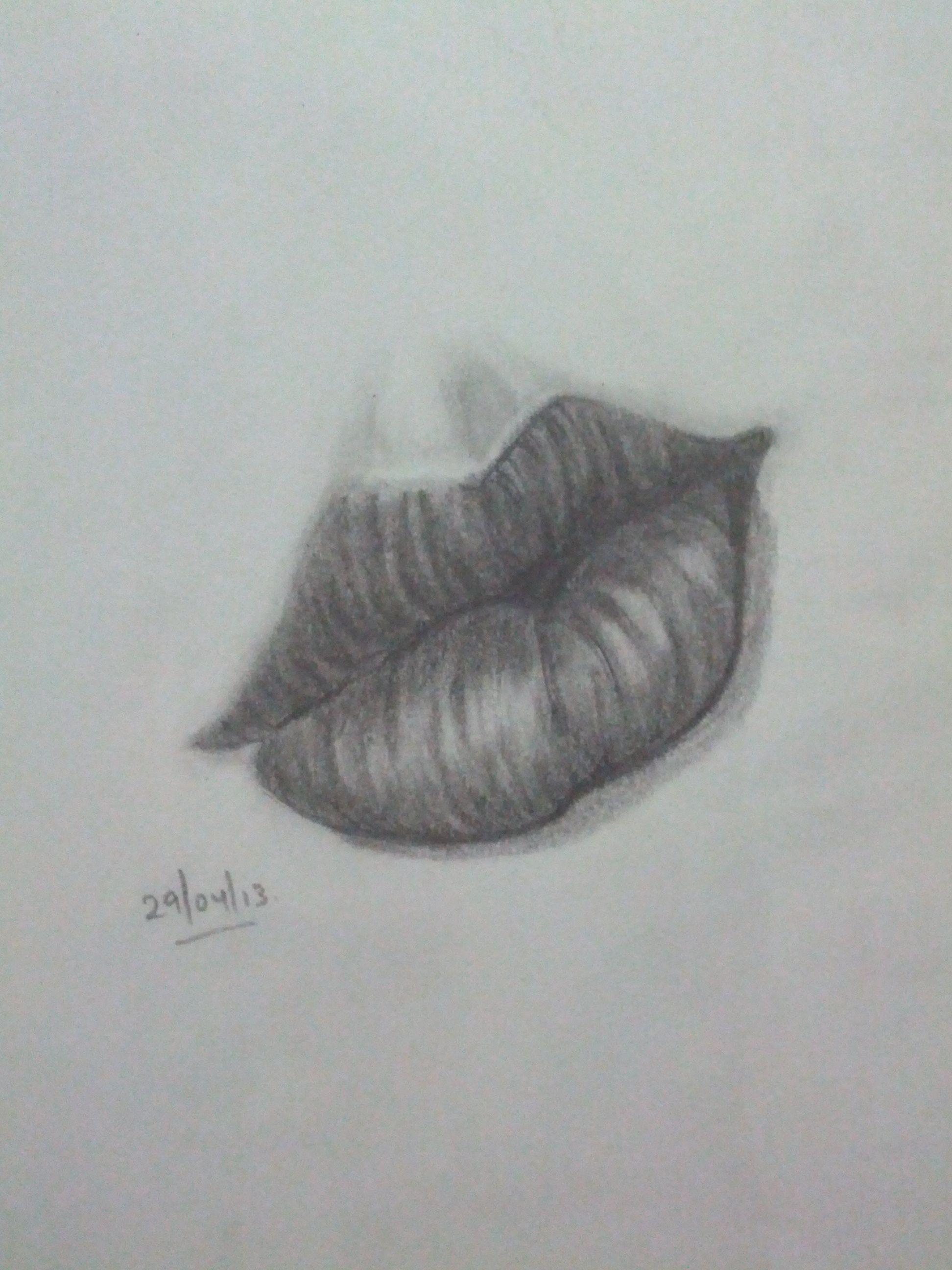 Beginner Sketches