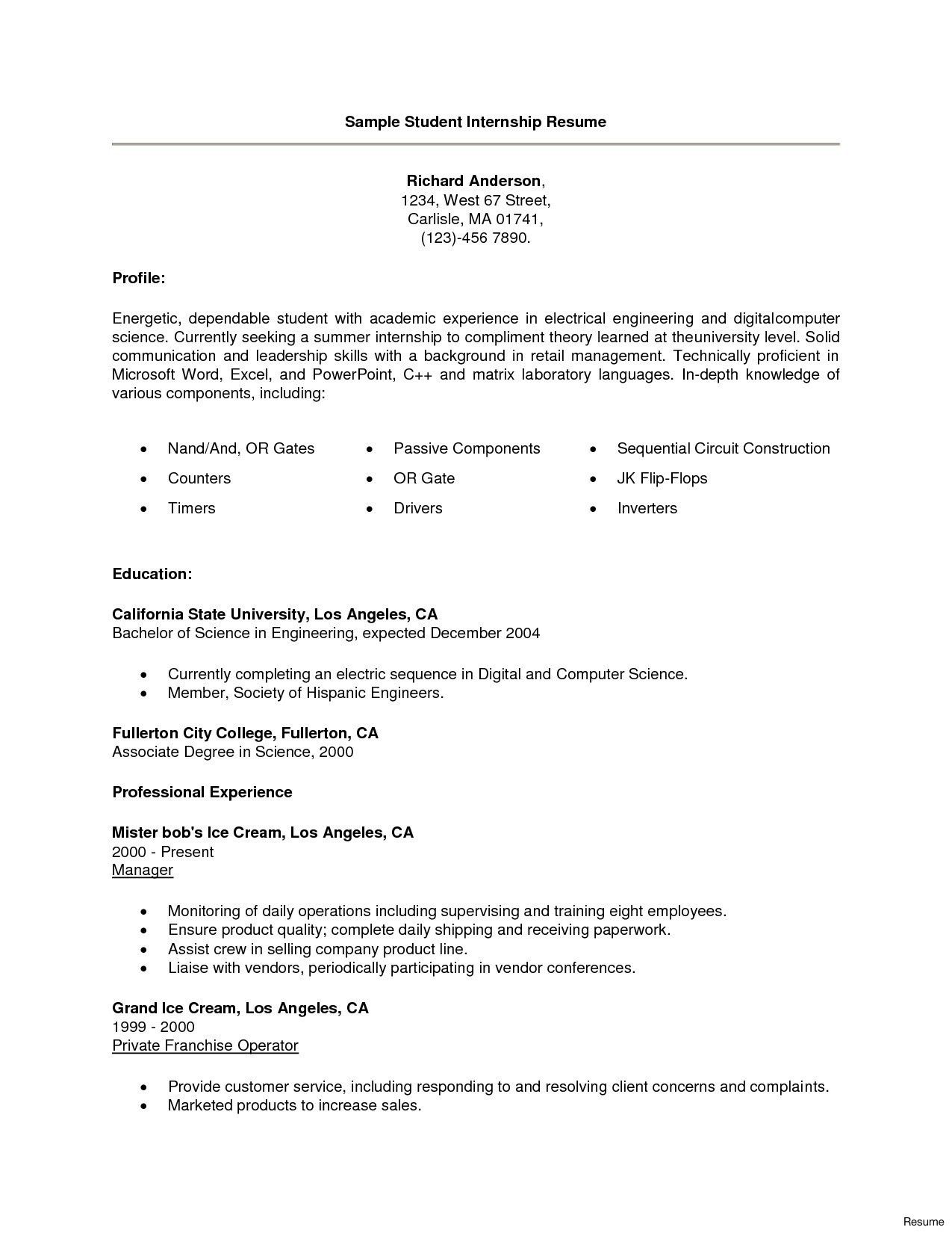 Cv Template For Summer Training
