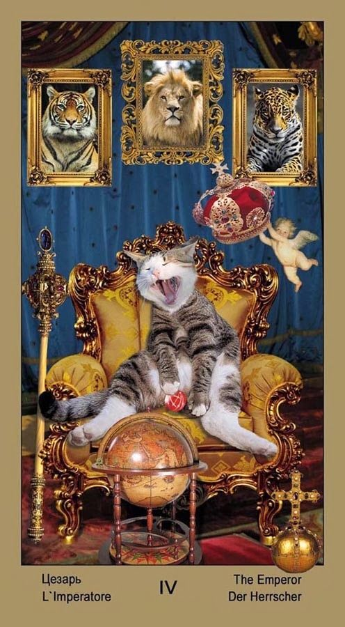 The Emperor - Таро Катавасия (Tarot Cat-A-Vasya) -- If you love Tarot, visit me at www.WhiteRabbitTarot.com