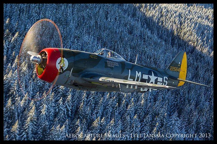 """""""HAIRLESS JOE"""" Republic P47D25RE Thunderbolt (Sn 44"""