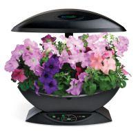Aerogarden Classic Svart Indoor Garden Aerogarden Herb 400 x 300