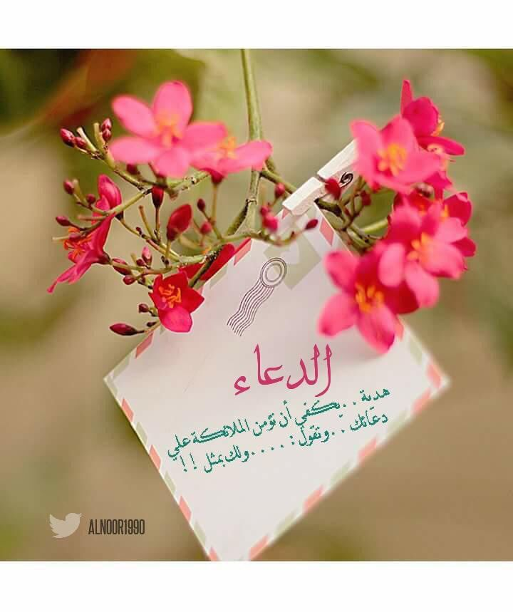 6 شج ـرة طي بة Gaadaa3 Twitter Good Night Messages Morning Greeting Good Morning Happy Monday