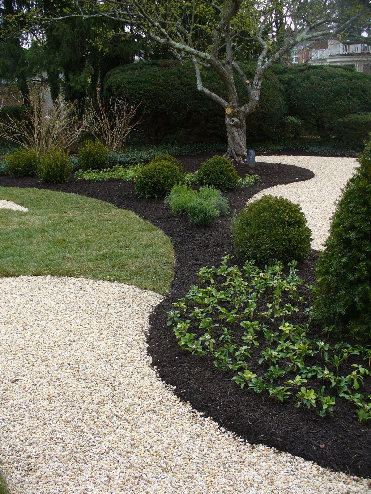 A pairing of black mulch with light colored crushed stone