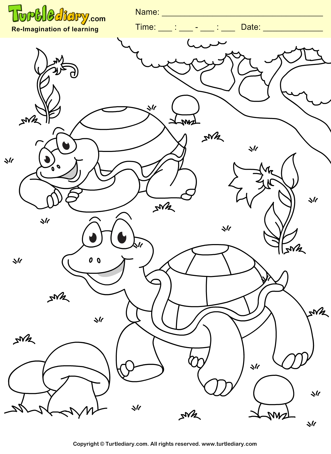 Turtle Spring Coloring Page