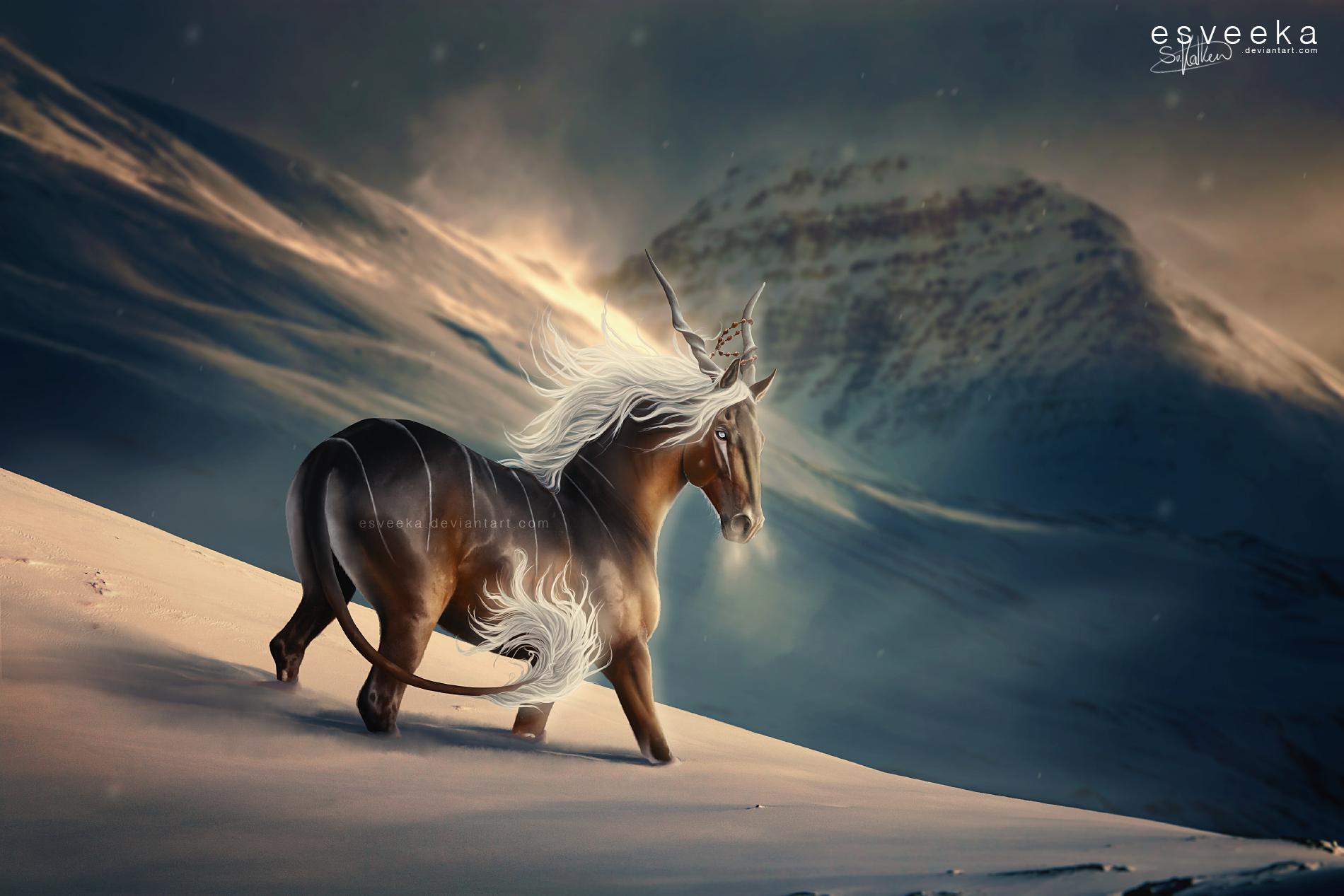Wonderful Wallpaper Horse Deviantart - 9bbdbfe9edb55f04959934f582eda5e9  Snapshot_934240.png