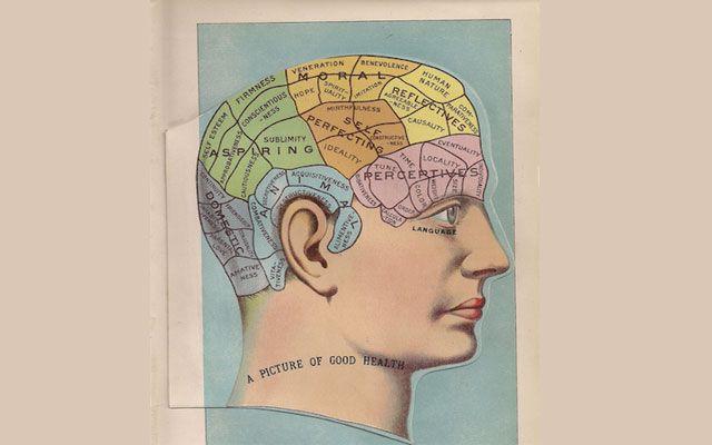 Las viejas ilustraciones del estudio del cuerpo humano han vuelto en ...
