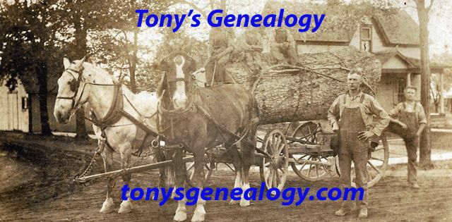 Tonys Genealogy