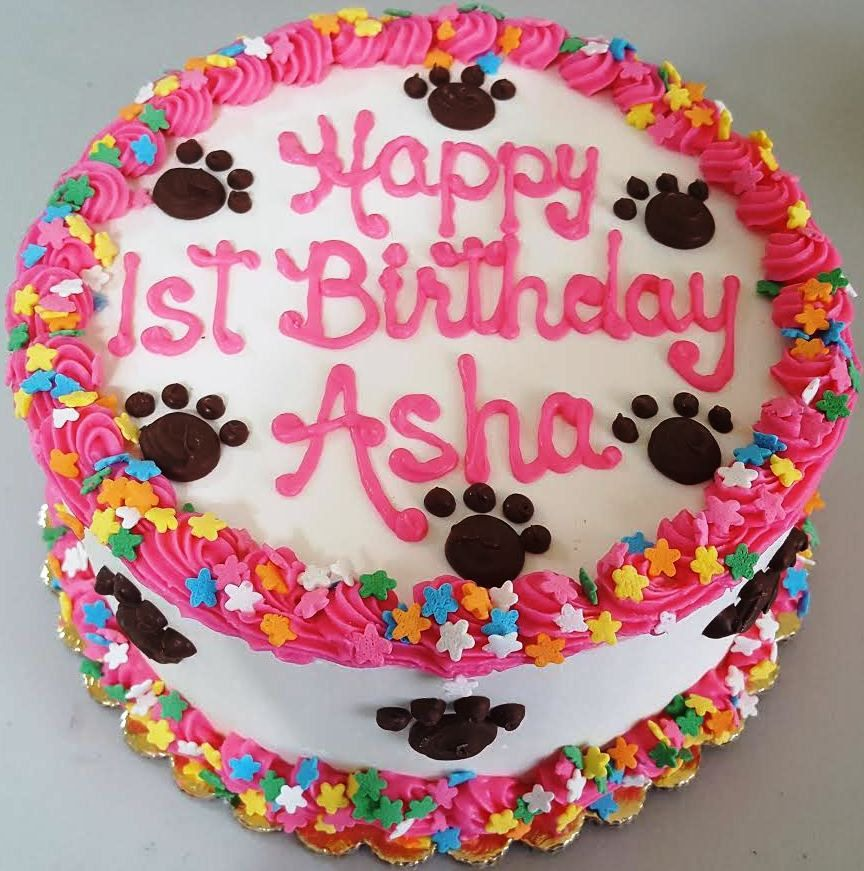 "Dog Birthday Cake Large BoneShaped 9""X5"" (Serves"