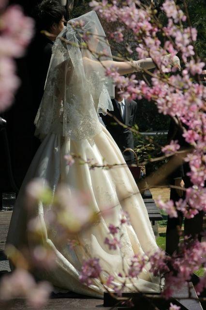 One Day Siesta 2011年4月 ウェディング 花嫁 ウェディングドレス