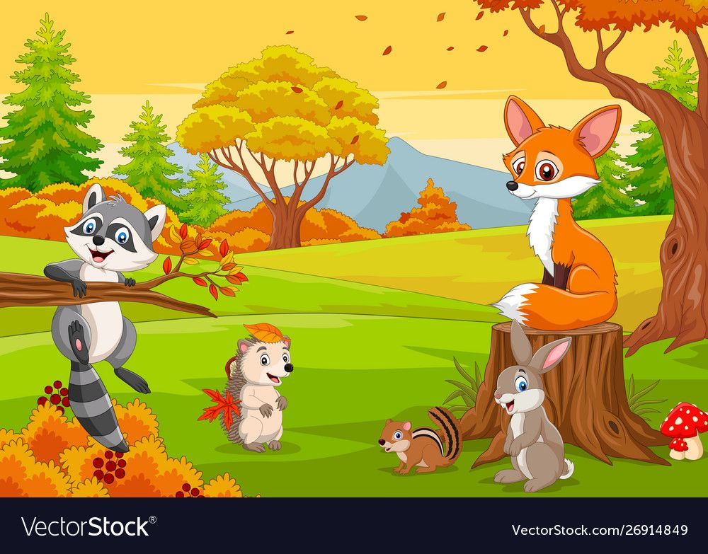 Cartoon wild animals in autumn forest vector image on