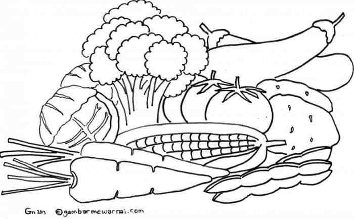 Gambar Mewarnai Image Pinterest Vegetable Coloring Pages