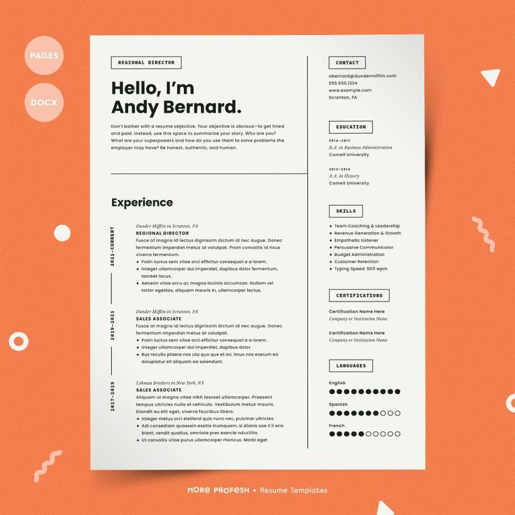 Graphic Designer Resume Fresher Infographics Modern