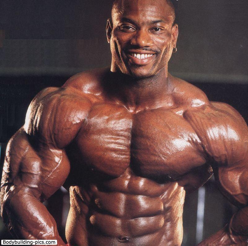 lumbar mr olympia - Buscar con Google | Anatomy Muscles Anatomia ...