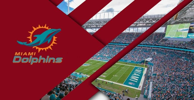 Miami Dolphins Live Stream Free Channels Miami dolphins