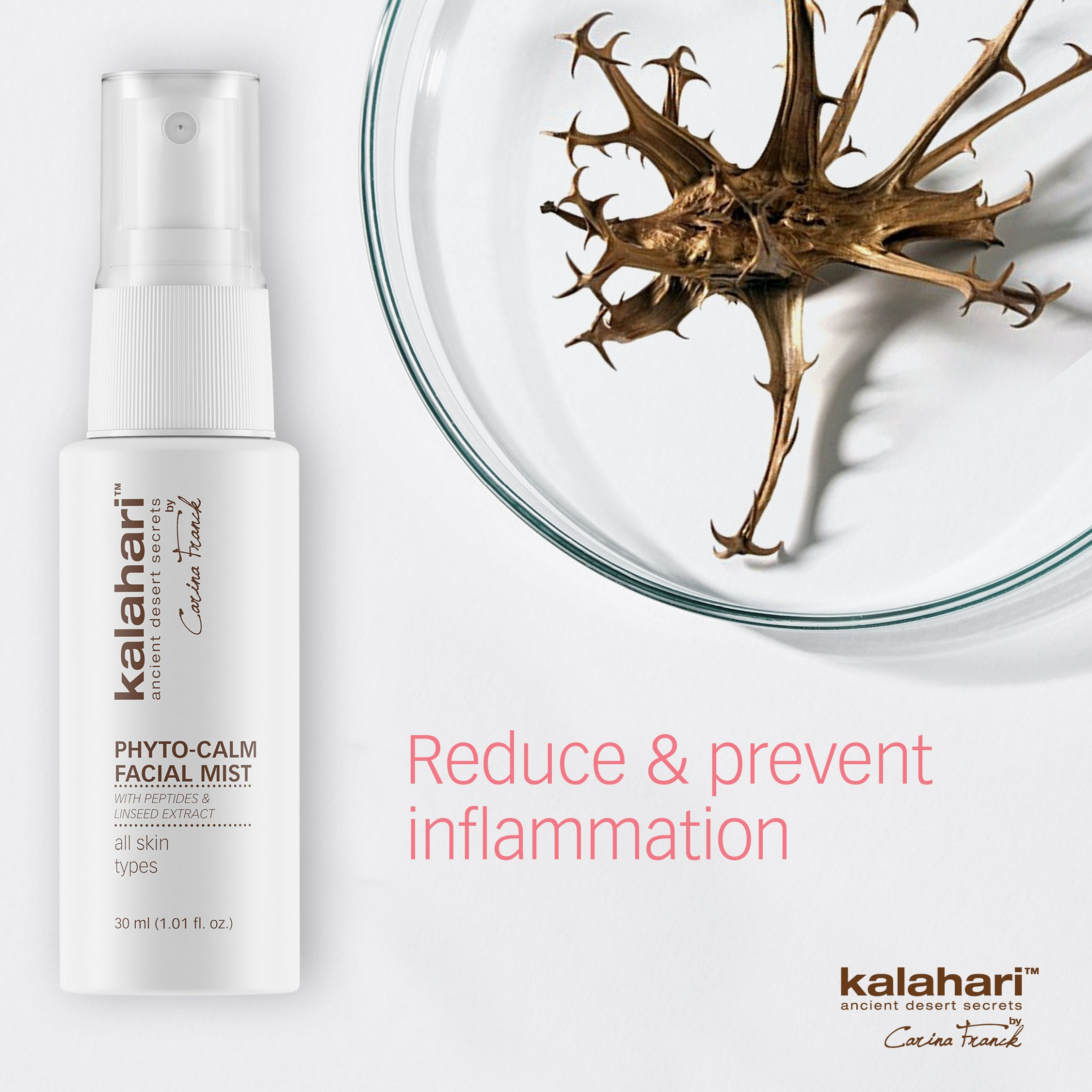 Protect The Skin From Free Radicals Professional Skin Care Products Skin Detoxification Skin Care Solutions