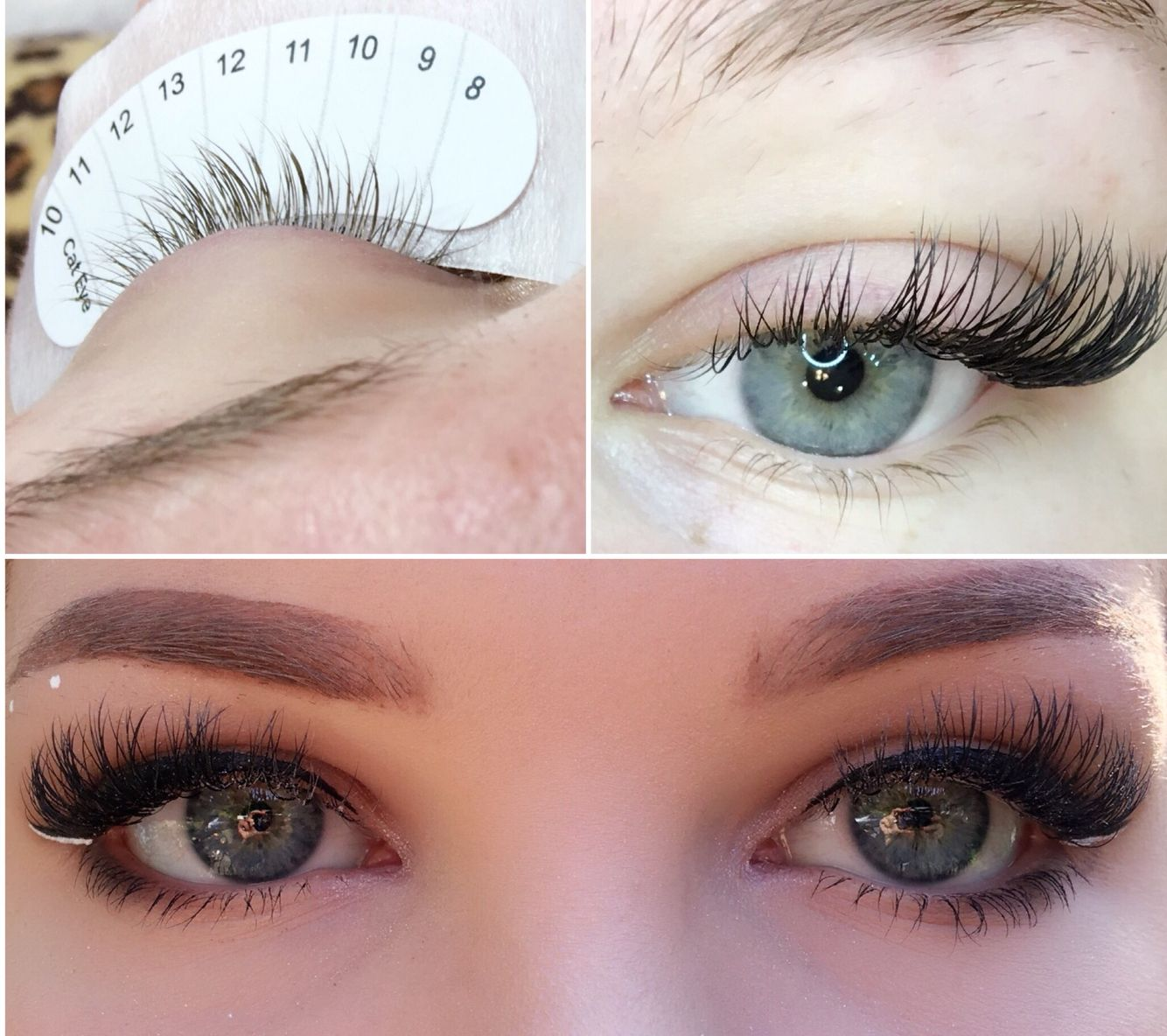 Cat eye using lash tavern ellipse lashes