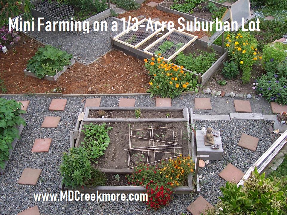 Mini Farming on a 1/3-Acre Suburban Lot | Garden design ...