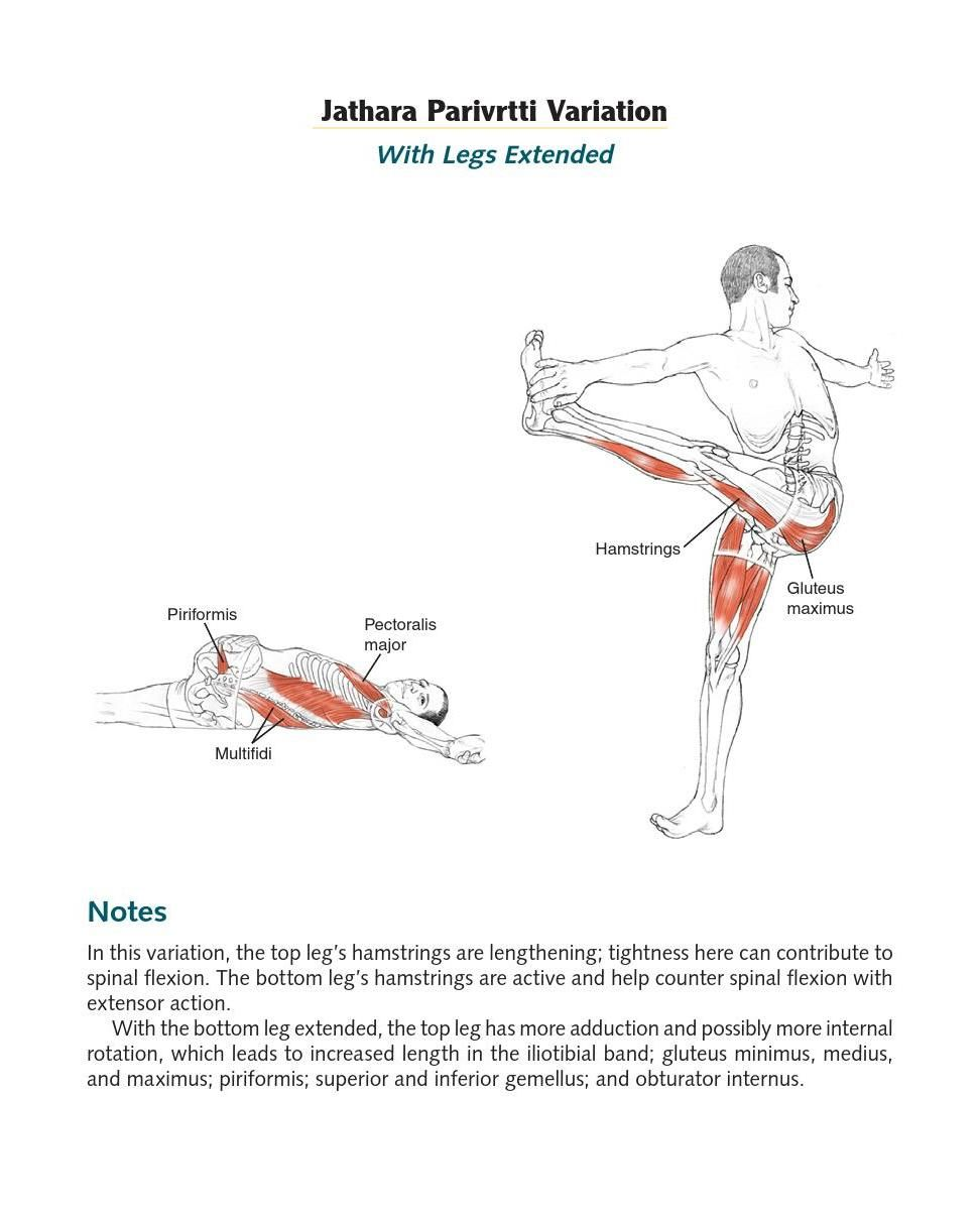 Clippedonissuu From Yoga Anatomy Extended Ed By Lesie Kaminoff