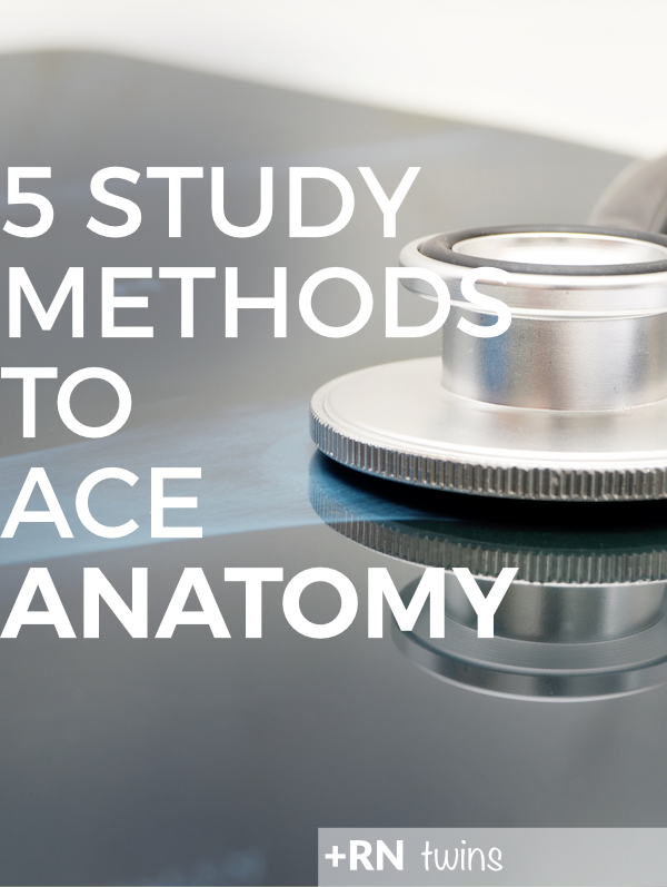 How To Study Anatomy Rn Twins How To Study Anatomy Nursing