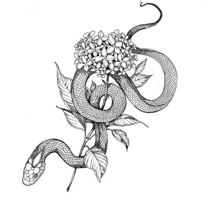 Snake with Hydrangea. drawing process ? | Tätowierung für Männer ✌