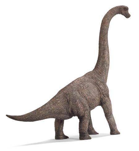 Long Neck Four Legs Dinosaur Png