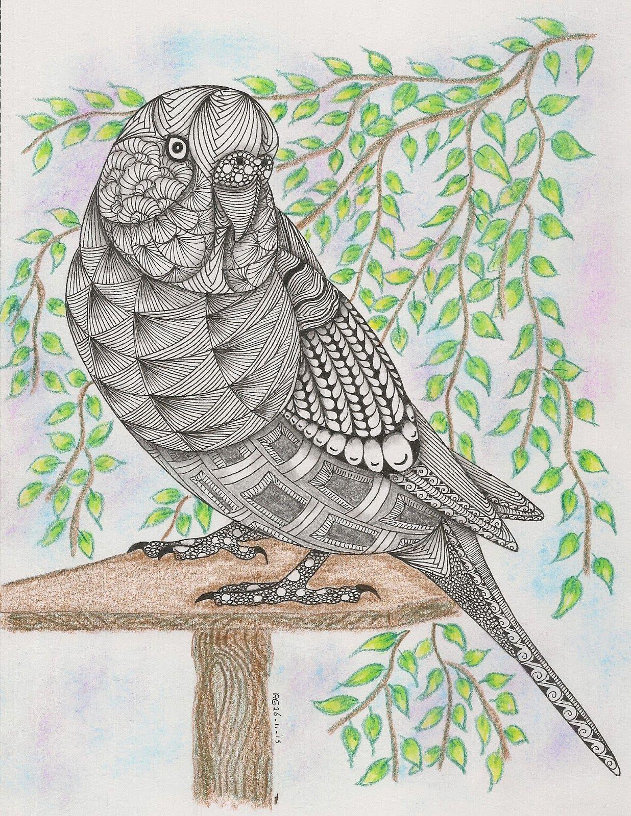 147 Parakeet Jpg 1 236 1 600 Pixels Zentangle Kunst Vogel Kunst Parkiet