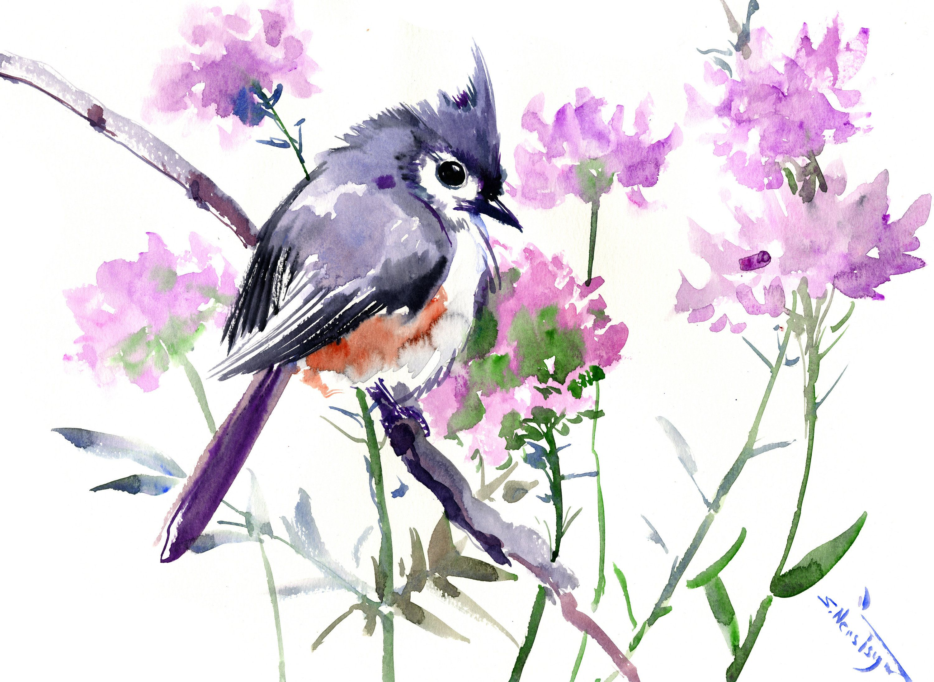 Titmouse And Purple Flowers Bird Art Birds And Flowers Original