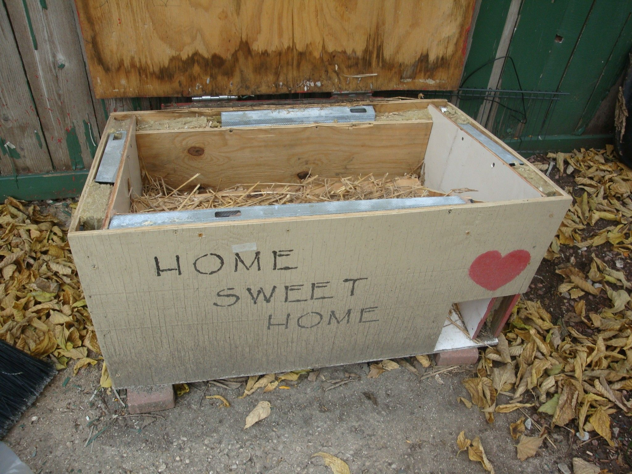 alley cat advocates building shelter for outside or feral cats