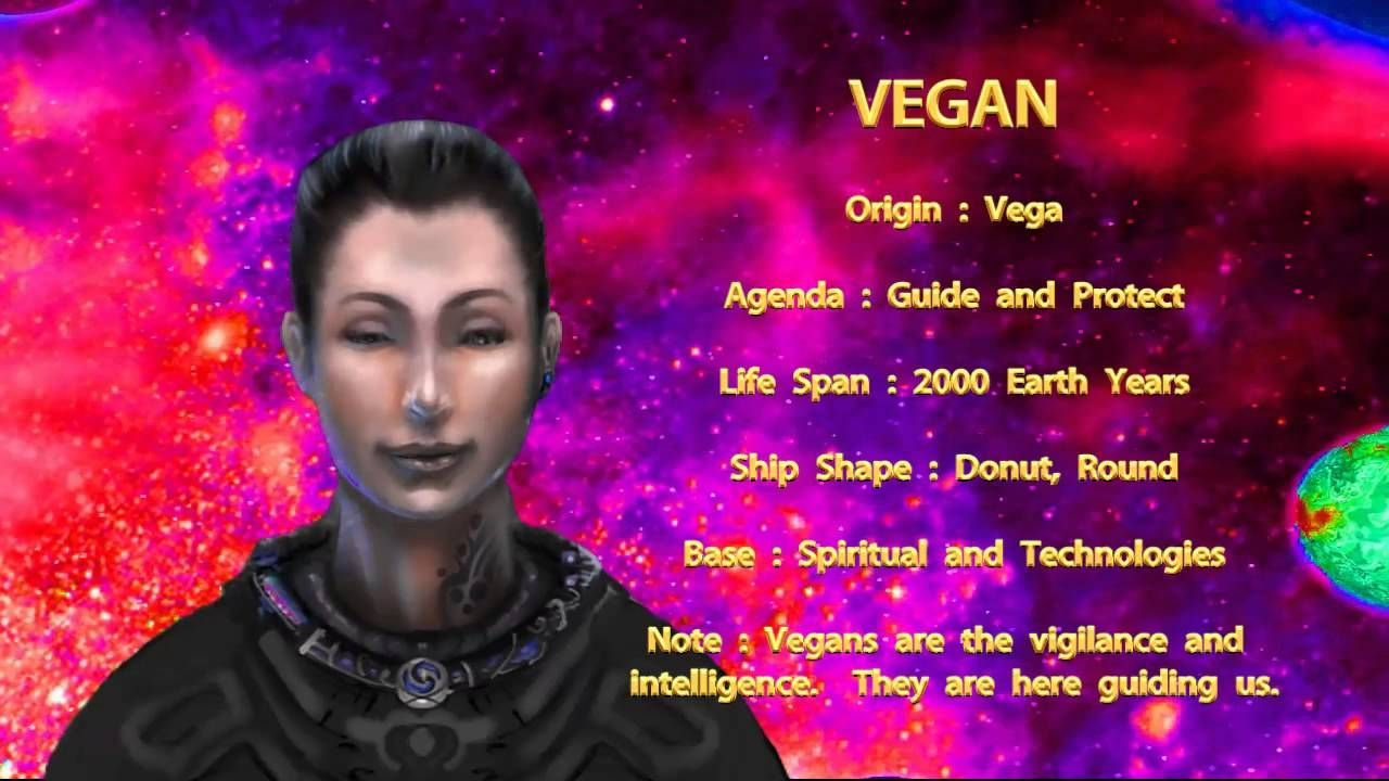 Photo of THE STAR RACES – VEGAN