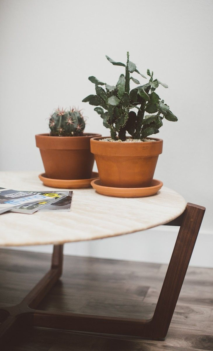 Atlas coffee table woods modern and interior plants i love the symbiotic relationship between wood and stone in the atlas coffee table the geotapseo Images