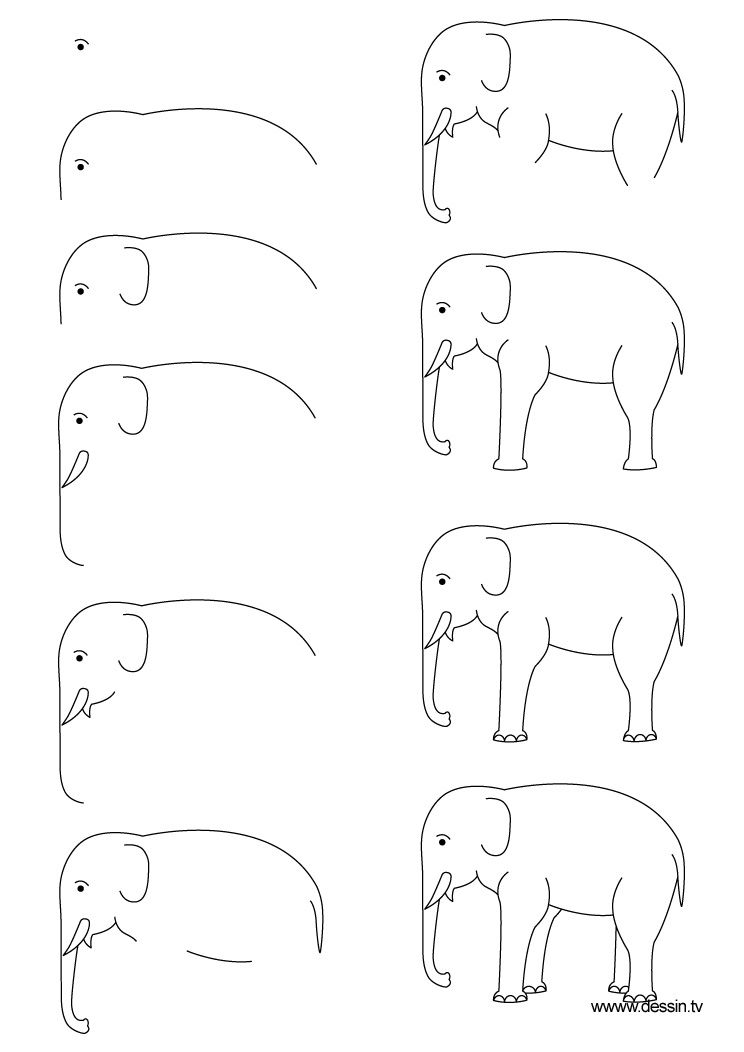How to draw an elephant, step-by-step. Click on picture, then ...