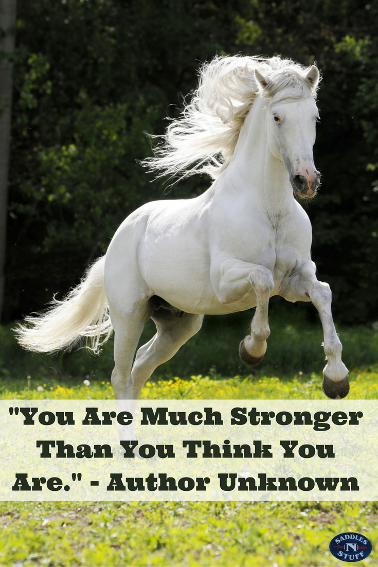 Pin By Saddles N Stuff On Inspirational Horse Quotes Horses