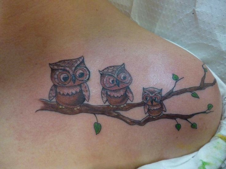 Tattoo charlie 39 s louisville owl family by tattoo charlie for Tattoo charlie s preston hwy louisville ky