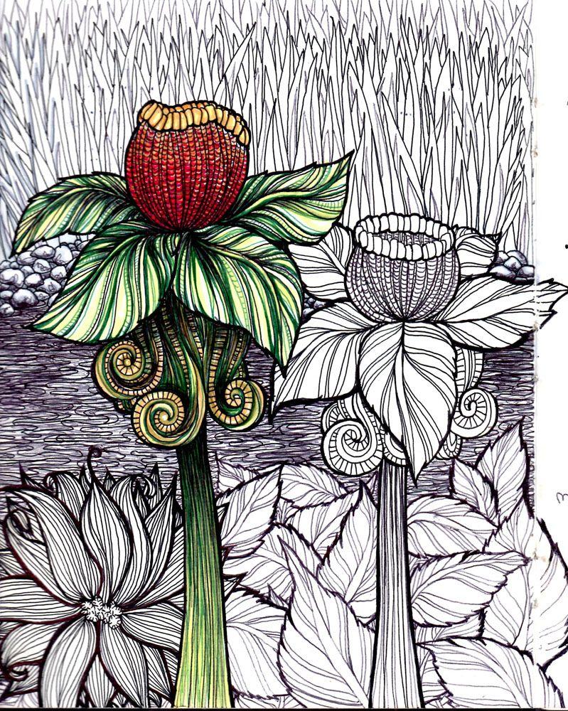 Zen doodle colour - Doodles