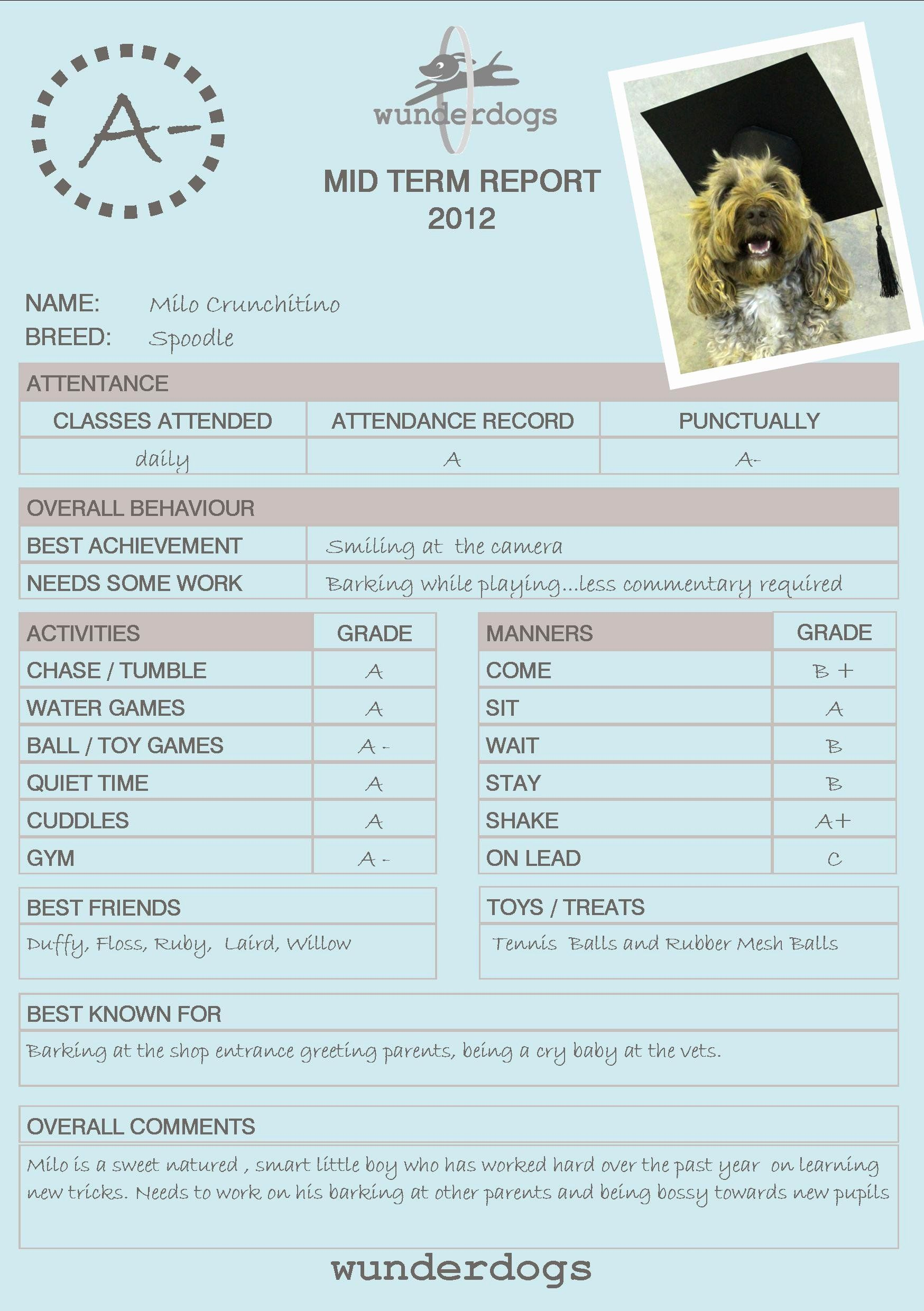 Dog Daycare Report Card Elegant 21 Of Doggy Daycare Report Card Template Report Card Template Dog Daycare Pet Health Record