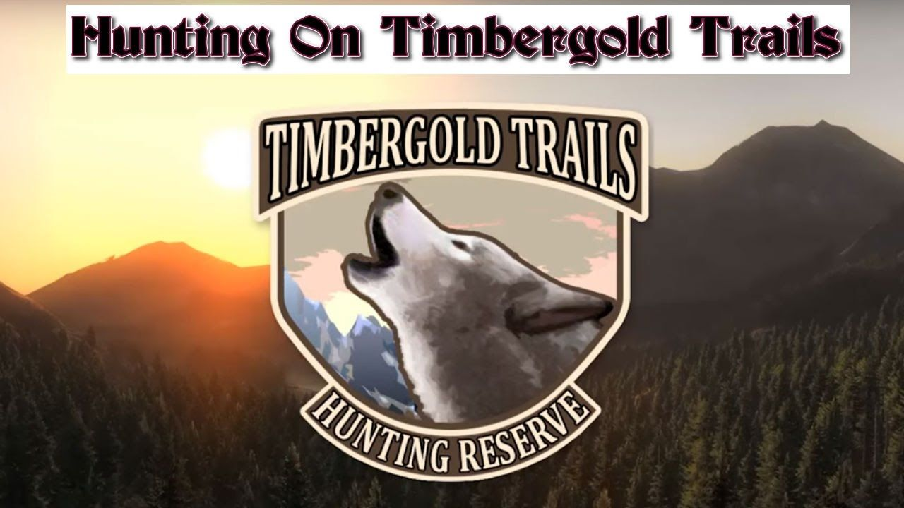 #TheHunter - Yet Another Hunt On Timbergold Trails - Happy Hunting!