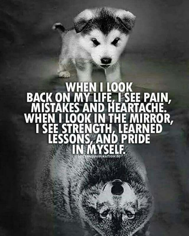 I See Strength And Confidence Now ॐ Z Nspicec 27feb2019 Warrior Quotes Wolf Quotes Lone Wolf Quotes