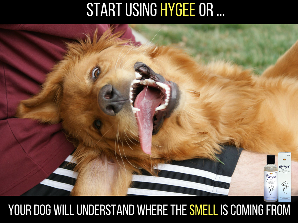 Start Using Hygee Or Your Dog Will Understand Where The Smell Is Coming From Available On Amazon Flipkart Nykaa Derp Dogs Dogs Dog Christmas Pictures