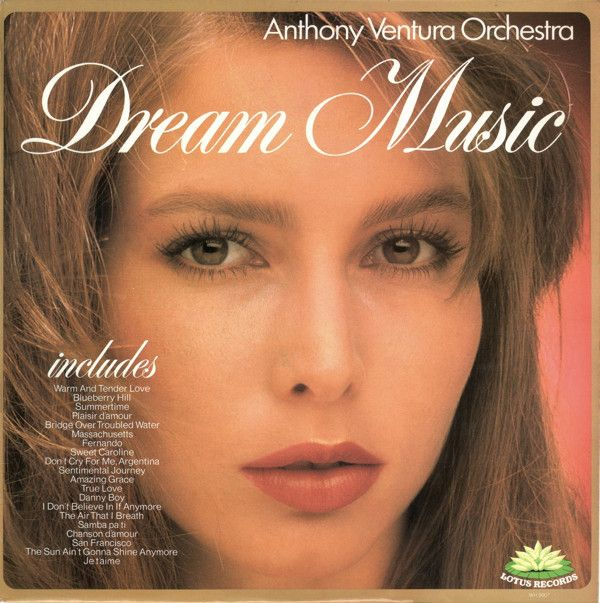 Language In 45 And 47 Stella Street: Dream Music (Vinyl, LP) At