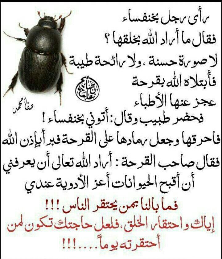 سبحان الله Arabic Quotes Arabic English Quotes Arabic Love Quotes