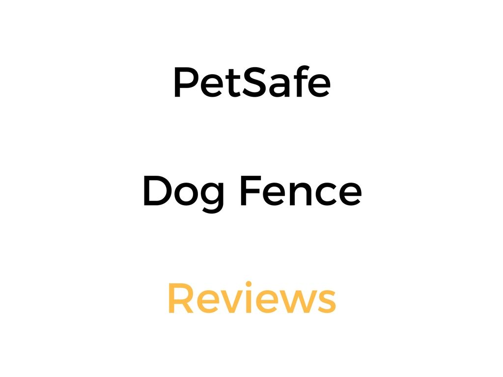 Petsafe Electric Dog Fence Reviews Guide